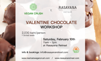 vegan chocolate making